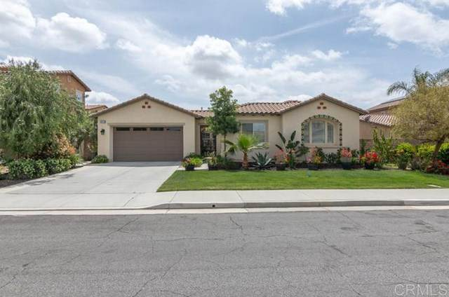 32529 Presidio Hills Lane, Winchester, CA 92596 (#NDP2104041) :: Team Forss Realty Group