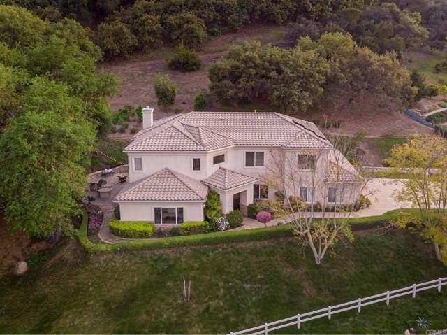 1683 Tecalote Drive, Fallbrook, CA 92028 (#NDP2104156) :: Zember Realty Group