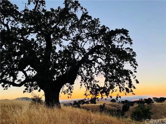 0 Cachagua, Carmel Valley, CA 93924 (#LG21104780) :: Prestige Properties Enterprises