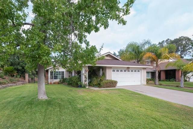 1102 Senwood Way, Fallbrook, CA 92028 (#NDP2109684) :: Team Forss Realty Group
