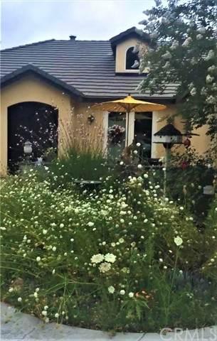 19050 Blackmore Street, Murrieta, CA 92562 (#IV21204341) :: Windermere Homes & Estates