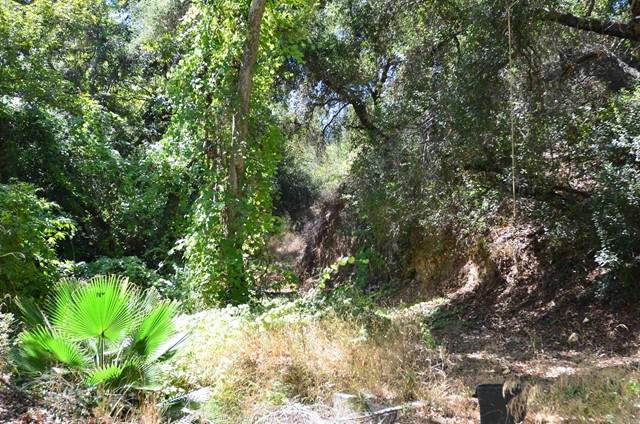 0 De Luz Rd, Fallbrook, CA 92028 (#NDP2110819) :: Rubino Real Estate