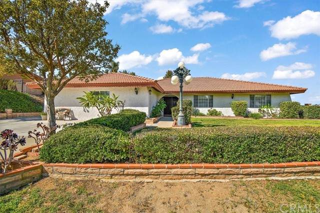 15911 Rancho Viejo Drive, Riverside, CA 92506 (#IV21207095) :: Rubino Real Estate