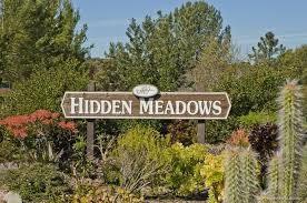 10212 Spruce Woodlands Way, Escondido, CA 92026 (#170053026) :: Kim Meeker Realty Group