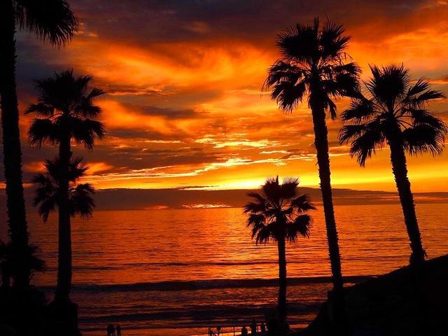 431 N Cedros, Solana Beach, CA 92075 (#190017421) :: Coldwell Banker Residential Brokerage