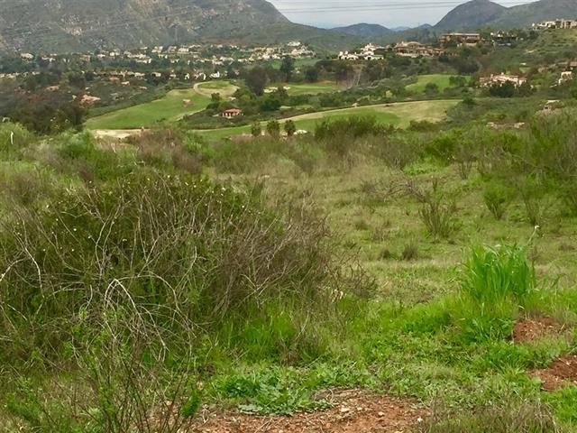 7.63 Acres Santa Fe Knolls At Artesian Rd #2, San Diego, CA 92127 (#190021349) :: Neuman & Neuman Real Estate Inc.