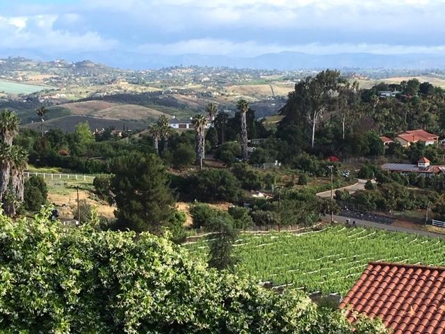 1230 Via Del Cerro, Bonsall/Vista, CA 92084 (#190024586) :: Farland Realty