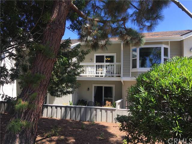 33565 Sea Gull Court, Dana Point, CA 92629 (#301616316) :: Ascent Real Estate, Inc.