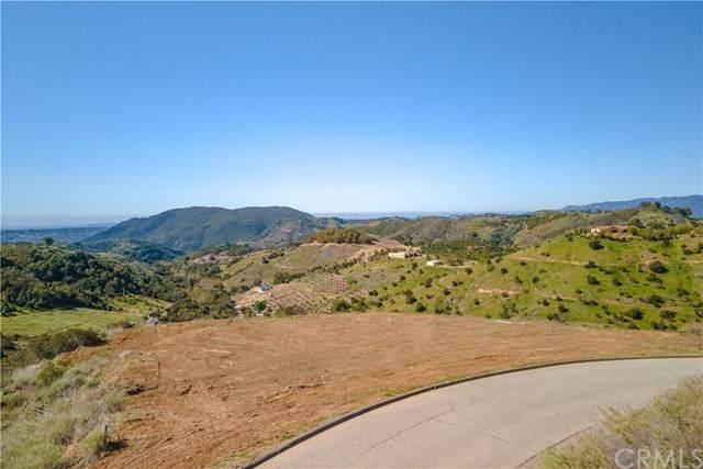 45130 Via Renaissance, Temecula, CA 92590 (#SW21061459) :: Wannebo Real Estate Group