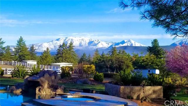 60810 Devils Ladder Road, Mountain Center, CA 92561 (#SW21088278) :: Wannebo Real Estate Group