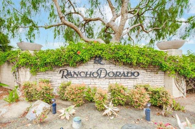 2152 Island Shore Way, San Marcos, CA 92078 (#NDP2106429) :: The Stein Group