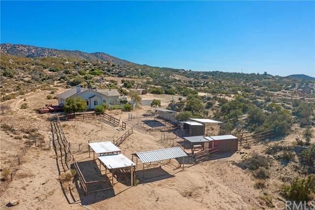 42525 Labrinia Lane, Anza, CA 92539 (#PW21221082) :: American Dreams Real Estate