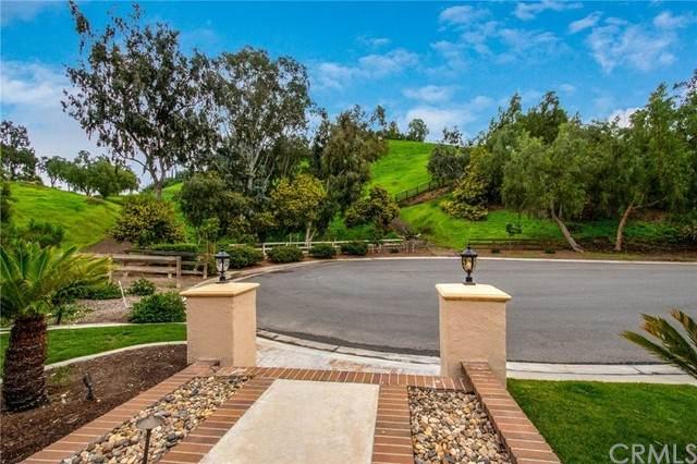 25741 Lone Acres Lane, Laguna Hills, CA 92653 (#OC21085184) :: The Stein Group