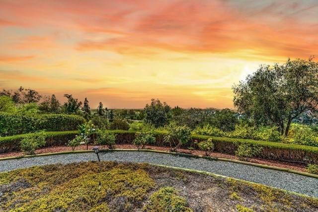2754 Los Alisos Lane North, Fallbrook, CA 92028 (#NDP2110366) :: Solis Team Real Estate