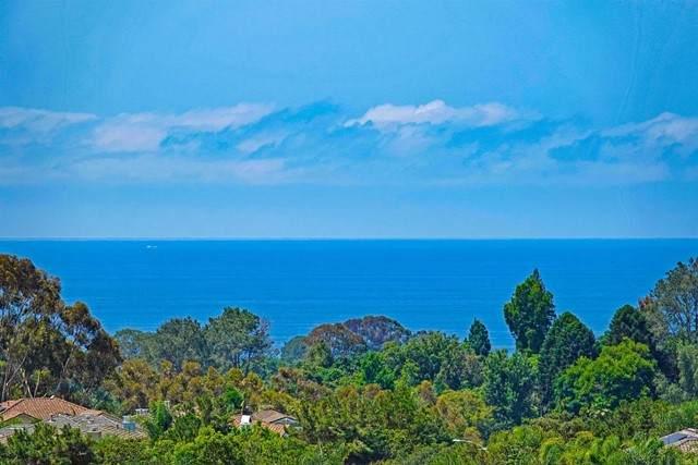 628 Lynwood Drive, Encinitas, CA 92024 (#NDP2107948) :: Solis Team Real Estate