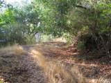 526 Cascade Drive - Photo 7
