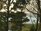 108 Lake Merced Hills - Photo 26