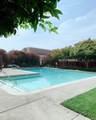 44 Campo Verde Circle - Photo 28