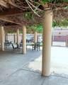 44 Campo Verde Circle - Photo 31