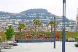 229 Dorado Terrace - Photo 33