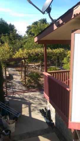 Clearlake, CA 95422 :: Keller Williams San Francisco