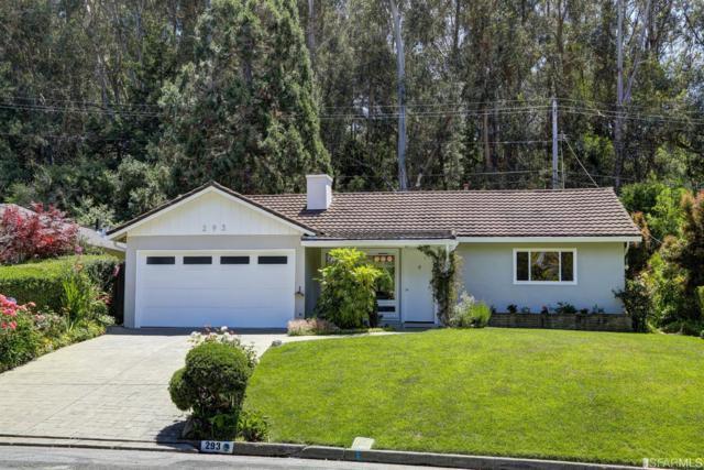 293 Ricardo Road, Mill Valley, CA 94941 (MLS #470975) :: Keller Williams San Francisco
