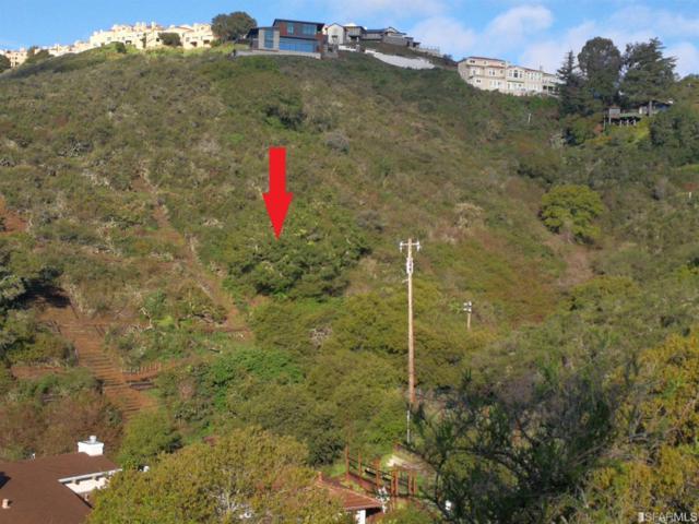 0-0 Lynton Avenue, San Carlos, CA 94070 (MLS #482740) :: Keller Williams San Francisco