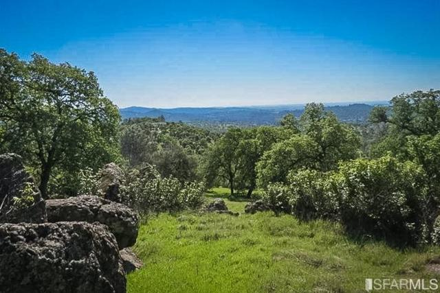11178 Township Road, Browns Valley, CA 95918 (MLS #483813) :: Keller Williams San Francisco