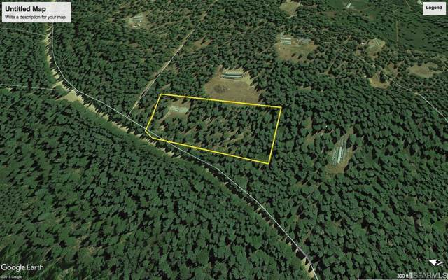 29889 Graniteville Road, Nevada City, CA 95959 (#489809) :: Maxreal Cupertino