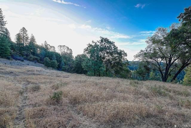 5520 Lynx Trail, Pollock Pines, CA 95726 (#502938) :: Corcoran Global Living
