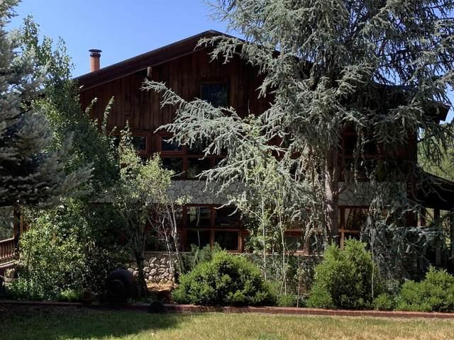 16030 Schaefer Ranch Road, Pioneer, CA 95666 (#221080767) :: The Kulda Real Estate Group