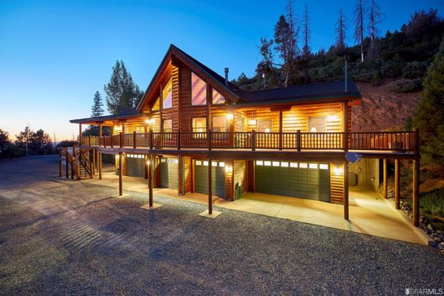 19400 Tanglewood Trail, Twain Harte, CA 95383 (#474307) :: Perisson Real Estate, Inc.