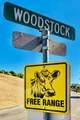 4335 Woodstock Rd - Photo 55