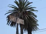 101 Santa Cruz Blvd - Photo 13