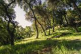 290-292 Rosario Park - Photo 6