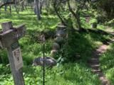 3330 Foothill Rd - Photo 17