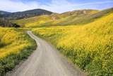 12 Hollister Ranch Rd - Photo 2