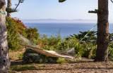3150 Sea Cliff - Photo 14