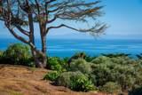3150 Sea Cliff - Photo 15