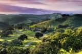 2667 Via De Los Ranchos - Photo 1