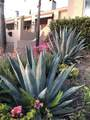 3756 Foothill Rd - Photo 41