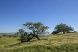 5999 Foxen Canyon Road - Photo 24