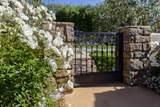 3803 White Rose Ln - Photo 3