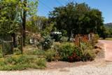 250 Verde Oak Dr - Photo 47
