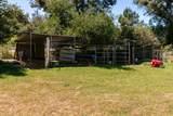 250 Verde Oak Dr - Photo 9