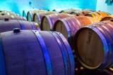 2075 Vineyard View Ln - Photo 136