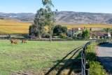 2075 Vineyard View Ln - Photo 56