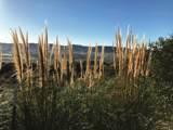2075 Vineyard View Ln - Photo 64