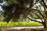 2075 Vineyard View Ln - Photo 68