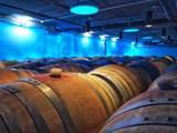 2075 Vineyard View Ln - Photo 82